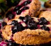 Primo piano fresco casalingo dei biscotti di farina d'avena fotografie stock libere da diritti