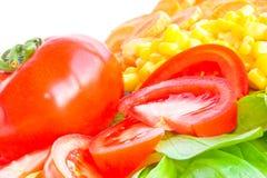 Primo piano fresco dell'insalata. Fotografie Stock Libere da Diritti