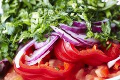 Primo piano fresco dell'insalata Fotografia Stock