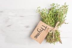 Primo piano fresco delle erbe del timo, su un fondo leggero fotografie stock libere da diritti