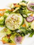Primo piano fresco e sano dell'insalata Fotografia Stock Libera da Diritti