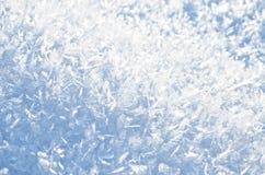 Primo piano lanuginoso della neve Immagini Stock