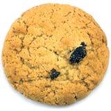 Primo piano a macroistruzione del biscotto di uva passa della farina d'avena isolato Fotografie Stock