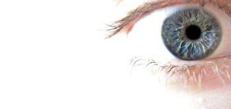 Primo piano a macroistruzione dell'occhio azzurro Immagine Stock Libera da Diritti