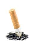 Primo piano a macroistruzione della cenere di estremità di sigaretta isolato Fotografia Stock