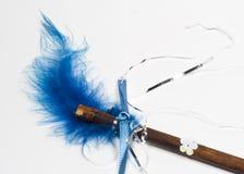 Primo piano magico della bacchetta della piuma blu Fotografia Stock Libera da Diritti