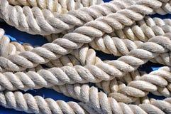Primo piano marino della corda Fotografia Stock