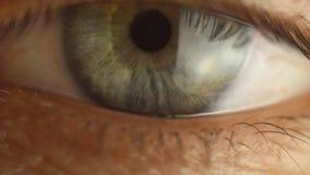 Primo piano maschio dell'occhio di lampeggiamento che guarda intorno Arteria rossa sulla macro del bulbo oculare Reazione dell'al archivi video