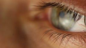 Primo piano maschio dell'occhio di lampeggiamento che guarda intorno Arteria rossa sulla macro del bulbo oculare Reazione dell'al stock footage