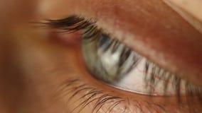 Primo piano maschio dell'occhio di lampeggiamento che guarda intorno Arteria rossa sulla macro del bulbo oculare Reazione dell'al video d archivio