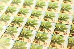 Primo piano moderno di molti bello francobolli Fotografia Stock