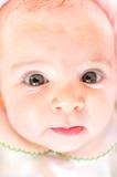 Primo piano molle della pelle dei grandi occhi del fronte del neonato Fotografie Stock