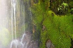 Primo piano muscoso della cascata Immagini Stock Libere da Diritti