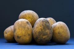 Primo piano non lavato e non sbucciato fresco delle patate Immagini Stock Libere da Diritti