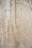 Primo piano (occidentale) lamentantesi della parete (Gerusalemme, Israele) Immagini Stock