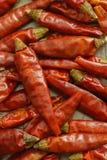 Primo piano rosso caldo dei peperoni di peperoncini rossi dei peperoncini rossi Fotografie Stock