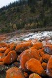 Primo piano rosso del flusso della roccia Fotografia Stock Libera da Diritti