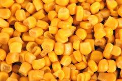 Primo piano sbucciato del grano del cereale Fotografia Stock Libera da Diritti