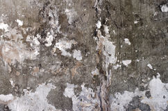 Primo piano sparato del muro di cemento incrinato Fotografia Stock Libera da Diritti