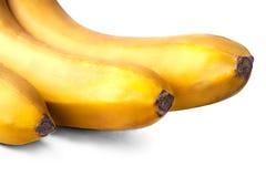 Primo piano sparato delle banane Fotografia Stock