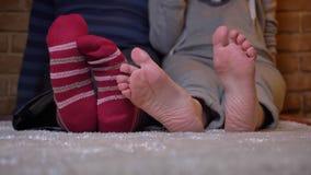 Primo piano sparato delle gambe nude femminili e di quelle maschii in calzini che si muovono e che graffiano su un tappeto simile stock footage