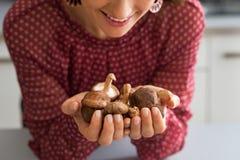 Primo piano sui funghi di shiitake della tenuta della casalinga Fotografie Stock