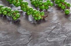Primo piano sui granelli di pepe di verde del resh sulla pietra grigia dell'ardesia, spazio fotografia stock