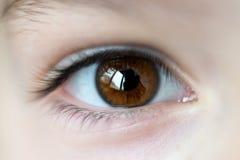 Primo piano sull'occhio aperto di marrone della ragazza fotografia stock libera da diritti