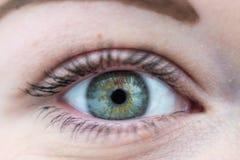 Primo piano sull'occhio aperto di verde della giovane donna fotografia stock