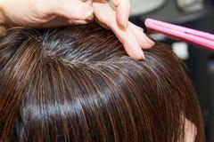 Primo piano sulle radici grige dei capelli della donna contro capelli scuri immagini stock libere da diritti