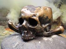 Primo piano umano del cranio Immagini Stock