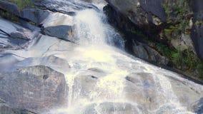 Primo piano Vancouver Canada della cascata di Shannon Town stock footage