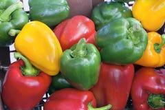 Primo piano variopinto dei peperoni dolci Fotografia Stock