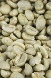 Primo piano verde dei chicchi di caffè Immagini Stock