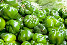 Primo piano verde dei peperoni dolci nel servizio delle verdure Immagine Stock