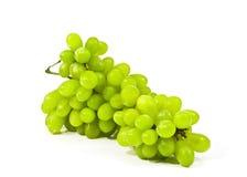 Primo piano verde dell'uva su un fondo bianco Immagine Stock