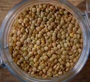 Primo piano verde delle lenticchie Fotografie Stock
