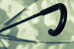 Primo piano verde nero della maniglia della canna dell'ombrello Immagine Stock