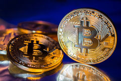 Primo piano virtuale dorato dei fondi Bitcoins della foto nuovo su un fondo blu Fotografie Stock
