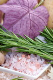 Primordial  sea salt and rosemary Royalty Free Stock Photography