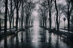 Free Primorsky Boulevard In Odessa Stock Photography - 105979992