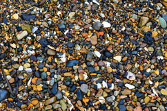 Primorsky Krai Bay Romanovka, rocks lifted by the sea, summer on a hot day, the texture of natural stone is very beautiful Royalty Free Stock Photos