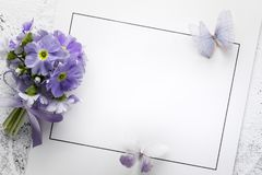 Primrose flower on paper card Royalty Free Stock Images