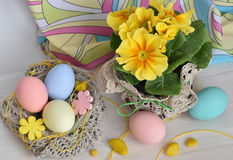 Primrose flowers with Easter eggs Stock Photos