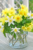 Primroses and wood anemones Stock Photo