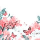Primula och fjäril för vår gul Arkivbild