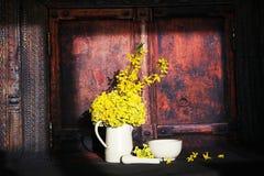 Primula veris flowers Stock Image