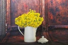 Primula veris flowers Royalty Free Stock Photos