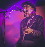Primus, Les Claypool, vivent de concert 2017 Images libres de droits