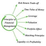 Princípios de gestão financeira ilustração do vetor